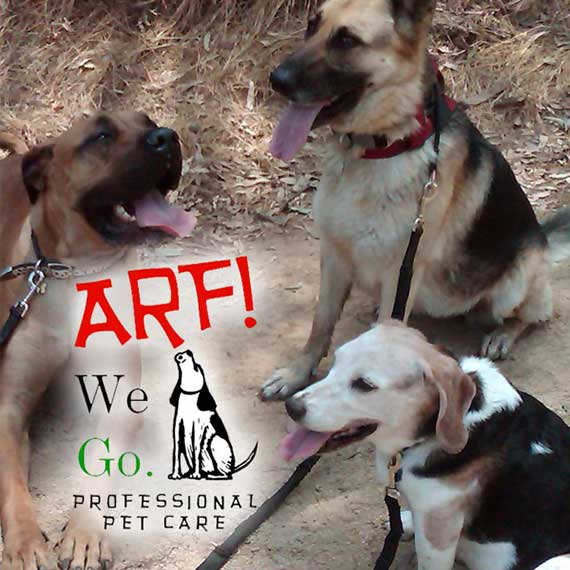 Arf! We Go. Pet Care
